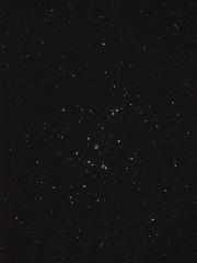 M44 - La Crèche (Beehive)