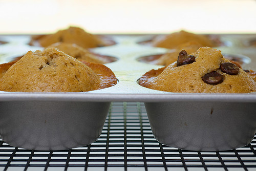 Chocolate Chip Muffins | Bake or Break