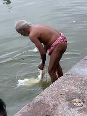Washing 1.5 (amiableguyforyou) Tags: india men up river underwear varanasi bathing dhoti oldmen ganges banaras benaras suriya mundu uttarpradesh ritualbath hindus panche bathingghats ritualbathing langoti dhotar langota