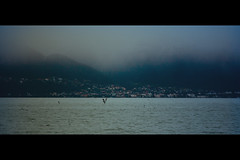 In the Love of Mist (James Yeung) Tags: mist fog landscape switzerland vevey ef70200mmf4lisusm