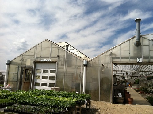 [155/365] Greenhouses by goaliej54