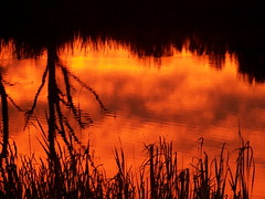beautiful reflection (fxyvgngrl) Tags: fall beautiful reflections ominous gorgeous sunsets erie