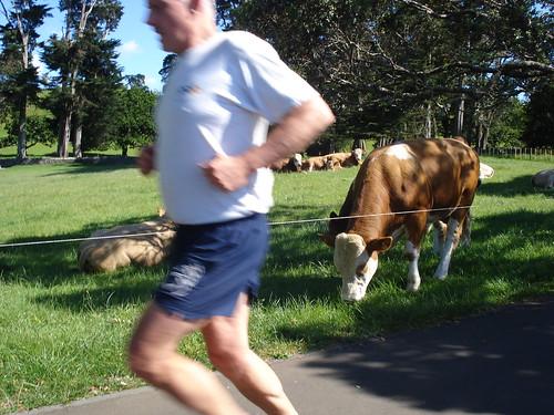 Corriendo por el parque