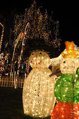 Christmas Lights in Eucalyptus Ave., San Carlos, CA