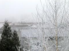 Winter am 22.12.2007