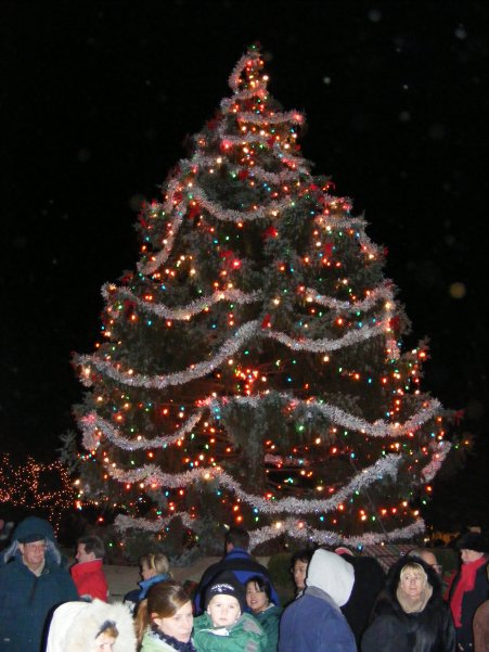 Tree Lighting at North School Park