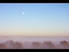 moon over mist (Sabinche) Tags: trees moon mist nature germany bravo searchthebest thuringia explore interestingness9 rhn sabinche rhoen interestigness fineartphotos diamondclassphotographer flickrdiamond merrychristmasdearfriend ilovetherhoen explore25122007