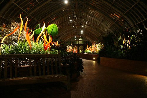 Chihuly Nights at Phipps Conservatory