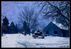 Minnesota (mac_raw) Tags: blue vacation snow texture minnesota bravo hugs bff besos themoulinrouge 18200mm firstquality xoxoxoxo xoxoxoxoxoxoxoxoxoxoxoxoxo xxxxxxxx xxxxxxxxxxxxxxxxxxxxxxxx xoxoxoxoxoxoxo d80 henyo supercookie infinestyle macraw cookieisthebest loveyoubunches andsweetest missyoubigtimegirlfriend shootingwithlaurie lauriefouramjava magicminnesota dontstayawaytolong dec312007jan22008 ohhhhupostedcoookie sosweetwinteristhere happytripandtimetoyoumylovelyfriend hopeuarewithsweetdreamsdearcookie
