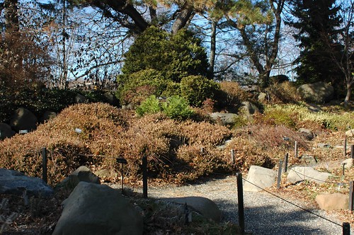 Heaths, Rock Garden, BBG