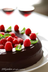 choco ring (*steveH) Tags: food cake dessert berry sweet chocolate mint explore liquor raspberry chocolatecake tort ciocolata steveh zmeura