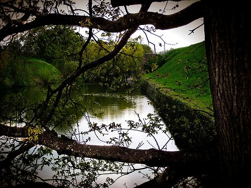 Moat View Through Tree