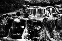 When It Falls (Neville_S) Tags: park two blackandwhite bw india white black fall water beautiful waterfall amazing fantastic pretty silk waterfalls canon350d flowing liquid pune silky japanesepark likesilk excapture itwastoobrightandthecolourswereweirdsoconvertedtobw nevillesukhiaphotography