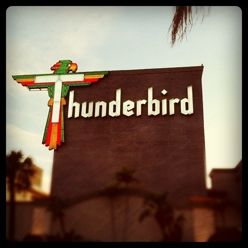 Thunderbird Motel by bichonphoto