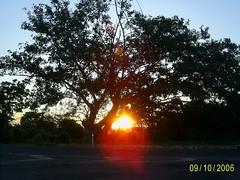 por do sol no trevo (nilgazzola) Tags: brazil brasil de foto sp fotos ou com tirada maquina echapora gazzola nilceia nilgazzola