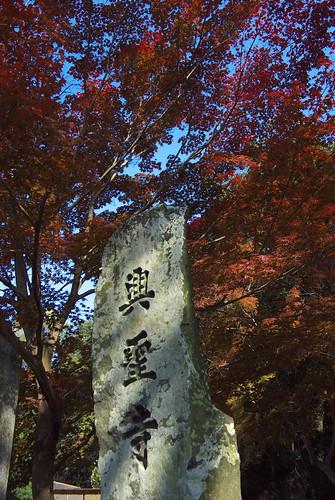 Koseiji Temple (興聖寺)