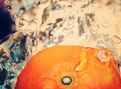 tangerine (Stephanie Massaro) Tags: water tangerine droplets bored splash