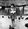 Girl with a broken arm and chickens (mexadrian) Tags: chickens rural mexico trix nayarit hasselblad mexican cast adobe sling squareformat huichol brokenarm 80mm huicholes thelittledoglaughed pochotitan adrianmealand