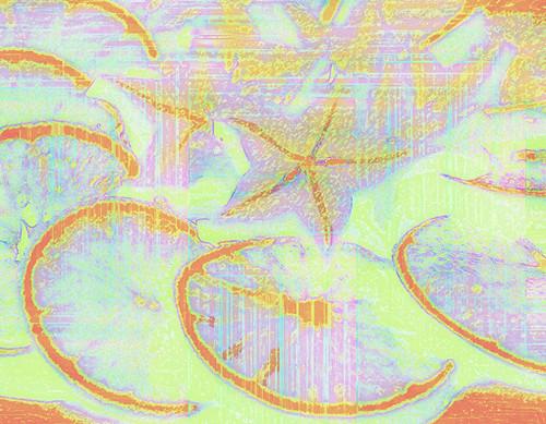 orangesstarfruit