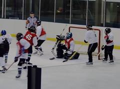 Teamwork (left wing lucy) Tags: game hockey speed sticks wichita skates peewee teamwork hikey boysandgirls wyha