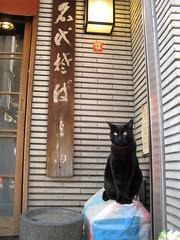 猫そば!?