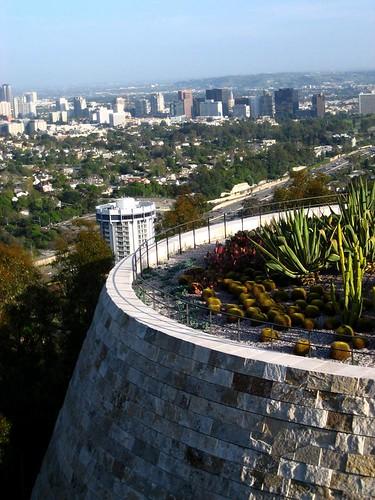cactus garden overlooking LA