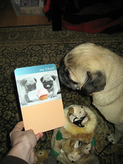 norman gets a birthday card