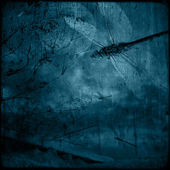 Dragonfly moon (borealnz) Tags: blue trees moon night square bravo mr dragonfly surreal toned manray bsquare firstquality littlestories t4l portmanteau artlibre picswithsoul thankstopaulandray borealnz