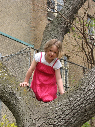 M climbing a tree at the park