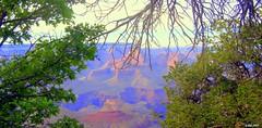 Greatness of Nature (Irina Kiseleva) Tags: trip blue trees sky orange usa black mountains green nature colors spring otw naturewatcher vanagram platinumpeaceaward