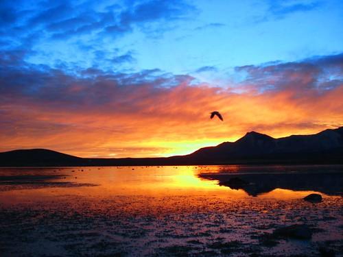 Amanecer - Lago Chungara