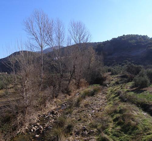 panoramario012