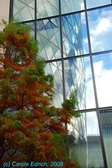 aDSC_0715 (webwandering-back.having.recovered.password) Tags: city autumn sky tree london glass architecture reflections foster carole gherkin 30stmaryaxe partners sirnormanfoster swissrebuilding dhamaka edrich