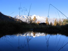 Riflessi (Tullio.) Tags: photographer excellent awards trentino caderzone valrendena betterthangood