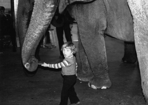Florian Richter seen here with the Ringling Brothers Barnum and Baileys Blue Unit 1980 in Madison Sq. Garden