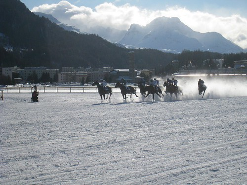White Turf Race, St. Moritz Switzerland