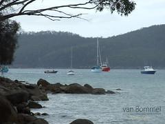 White Beach (33) (Lewis van Bommel - van Bommel Photography) Tags: ocean trees sea white beach boats sand australia tasmania van bommel mour