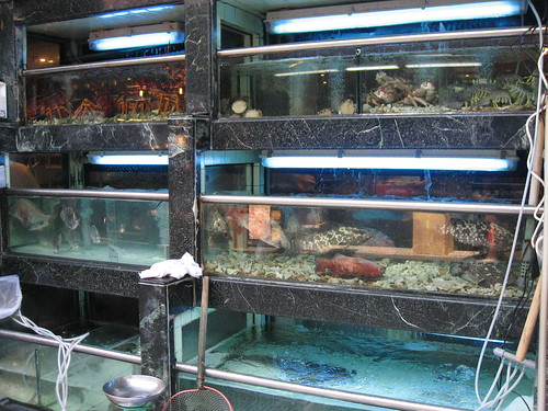 Fresh seafood outside Macau restaurant