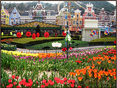 Tulips of Everland (Dae-Wang) Tags: flowers garden colorful tulips korea foliage suwon everland golddragon colorphotoaward impressedbeauty aplusphoto top20travel superbmasterpiece diamondclassphotographer ilovemypic colorartaward artlegacy excapture betterthangood flickrestrellas worldtrekker natureselegantshot