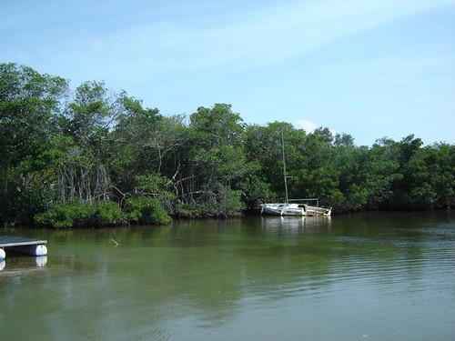 Islamorada Shipwreck