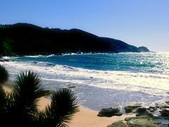 Praia deserta (Martha MGR) Tags: flores praia natureza ps soe oceano onde mmgr shieldofexcellence goldstaraward marthamgr marthamariagrabnerraymundo marthamgraymundo