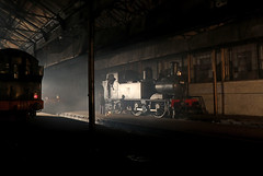 Didcot shed (Andrew Edkins) Tags: steamtrain light canon winter night greatwestern 1466 14xxclass gwr didcotrailwaycentre oxfordshire 5051 castleclass 6697 shed people geotagged uksteam timelineevents photoshoot england railwayphotography