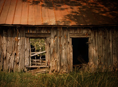 Eye Contact (evanleavitt) Tags: county door wood roof summer abandoned window shop rural ga georgia tin eyes jasper shadows darkness decay air entrance rusty southern soul americana weathered to shack blacksmith casting humidity the in theamericansouth cecadas