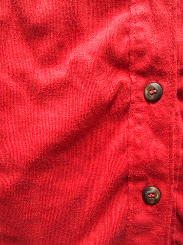 Red Ribbed Button-down Tank (detail)