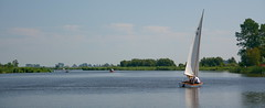 A la vela / Sailing (SBA73) Tags: panorama lake holland water netherlands landscape lago boat agua eau wasser barca view nederland panoramic holanda vela aigua bot 2007 waterland lowcountries llac velero vaixell holysloot veler paisesbajos pasosbaixos holysloterdie