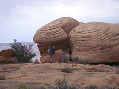 Rock formations on the Esplanade (Al_HikesAZ) Tags: park camping arizona rock creek 510fav river landscape sandstone eric hiking grandcanyon grand canyon explore national backpacking esplanade backpack backcountry wilderness thunder sierraclub formations rockformations mochila inthecanyon grandcanyonnationalpark coloradoplateau naturesfinest 50v5f humpingaruck instantfave gcnp awesomenature thunderriver unature tapeats belowtherim