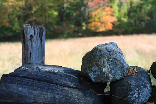 Stones on Fence