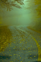 Parkway Fog (H  Collins) Tags: autumn mountains fall landscape scenic waterfalls blueridge
