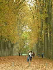 Love in Autumn (Inglewood Mum (Chris)) Tags: autumn trees paris france love leaves gardens palace versailles chateau smrgsbord naturesfinest anawesomeshot aplusphoto top20travel thatsclassy octnov2007 platinumheartaward redmatrix mygearandmepremium mygearandmebronze mygearandmesilver mygearandmegold