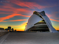 The Valencia's Opera House at dawn (Salva del Saz) Tags: city santiago espaa house valencia architecture modern spain arquitectura opera arts olympus calatrava palau hdr highdynamicrange sciences moderna ciudaddelasartesylasciencias c8080wz c8080 3xp supershot salvadordelsaz salvadelsaz